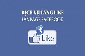 dich-vu-tang-like-fb